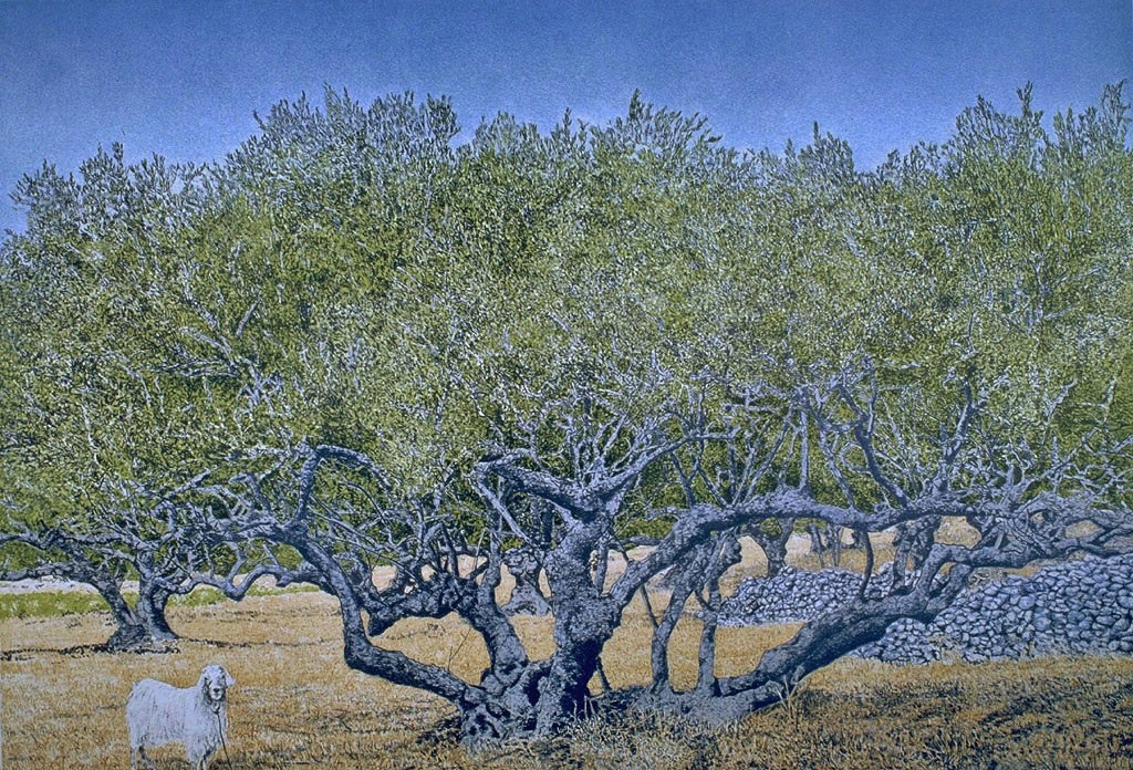 Goat and Olive tree - George Tzannes