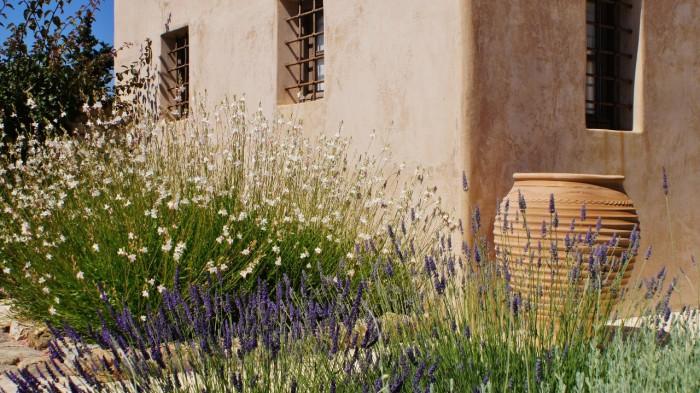 Het guesthouse - binnenplaats (4)